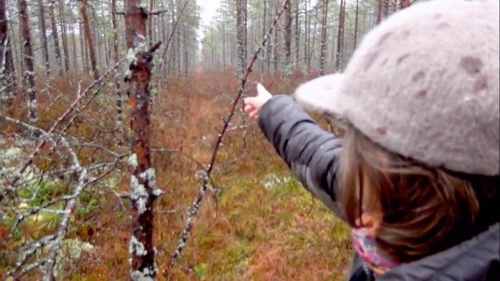 Lippalakkipäinen nainen kuvan etualalla oikealla osoittaa kädellään poispäin kuvaajasta kituliasta metsää kasvavan suomaiseman keskelle